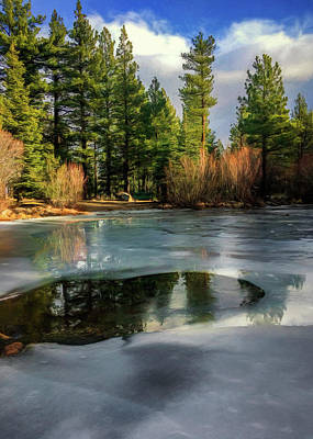 Photograph - Ice Pond by Maria Coulson