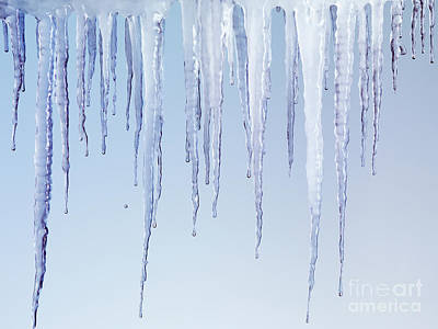 Melting Icicles Art Print by Oleksiy Maksymenko