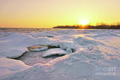 Photograph - Melting In Sunshine by Charline Xia