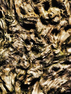 Melting Wood Art Print by Wim Lanclus