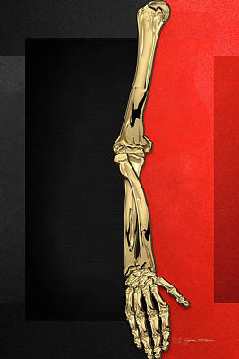 Digital Art - Memento Mori - Gold Human Arm Bones Over Black And Red Canvas by Serge Averbukh