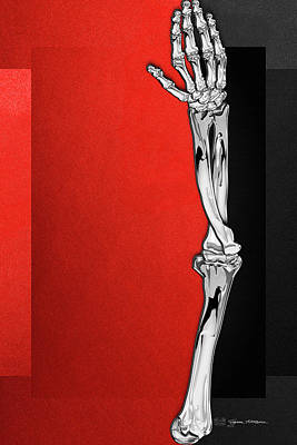 Digital Art - Memento Mori - Silver Human Arm Bones Over Red And Black Canvas by Serge Averbukh