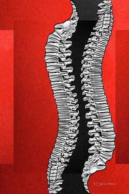 Digital Art - Memento Mori - Two Sets Of Silver Human Backbones Over Red And Black by Serge Averbukh