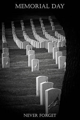 Photograph - Memorial Day  by Susan  McMenamin