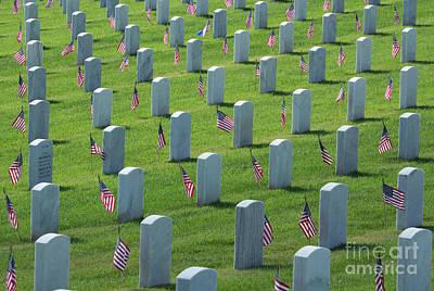 Memorial Flags Art Print