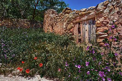 Photograph - Memories Among Flowers by Eduardo Jose Accorinti