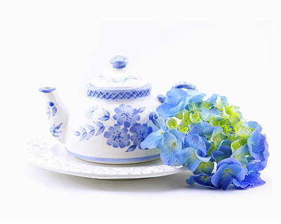 Memories In Blue Art Print