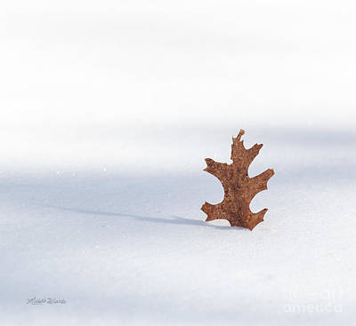 Photograph - Memories Of Autumn II by Michelle Wiarda-Constantine