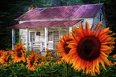 Photograph - Memories Of Home by Debra and Dave Vanderlaan