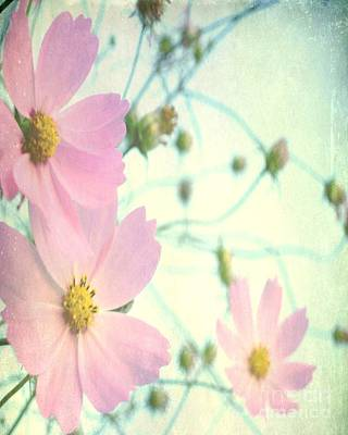 Photograph - Memories Of Spring by Itaya Lightbourne