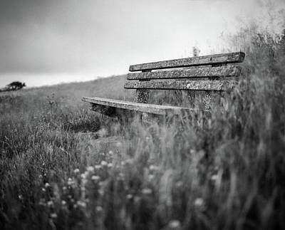 Photograph - Memory Bench by Will Gudgeon