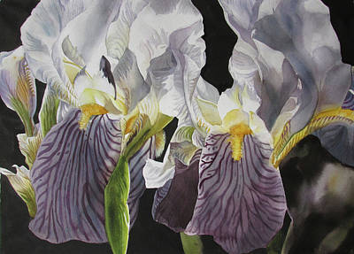 Painting - Memory Of The Iris by Alfred Ng