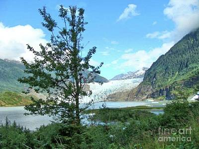 Photograph - Mendenhall Glacier View From Path by Janette Boyd