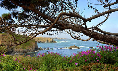 Photograph - Mendocino Coast by Carla Parris