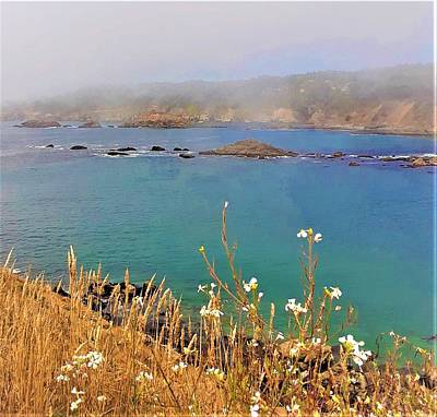 Photograph - Mendocino Headlands by Lisa Dunn