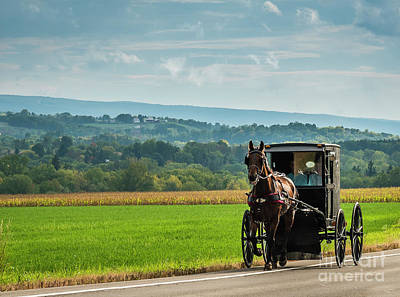 Photograph - Mennonite Simplicity  by Joann Long