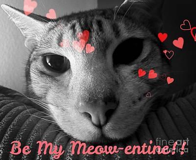 Photograph - Meow-entine by Jenny Revitz Soper