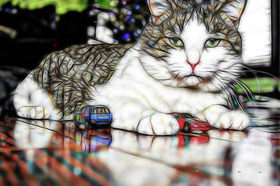 Photograph - Meowy Cars by Michelle McPhillips