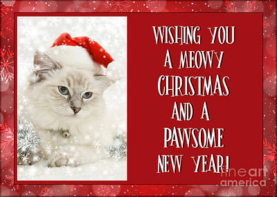 Digital Art - Meowy Christmas Wishes by JH Designs