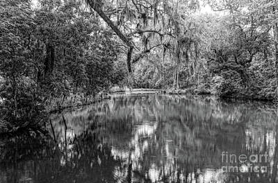 Photograph - Mepkin Pond Black And White by Elvis Vaughn