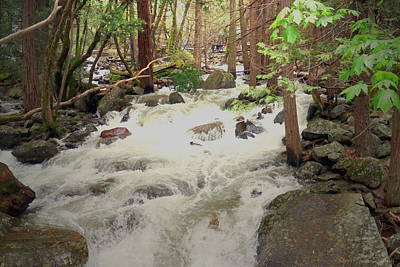Photograph - Merced River At Yosemite Two by Joyce Dickens