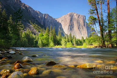 Merced River In Yosemite Valley Art Print by Buck Forester