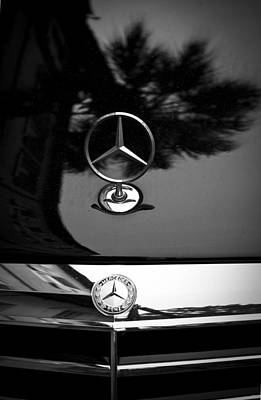 Mercedes Benz Palm Reflection 2 Original
