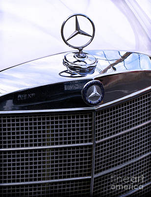 Photograph - Mercedes by Colleen Kammerer