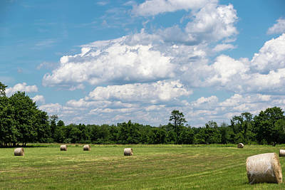 New Jersey Photograph - Mercer County Landscape by Steven Richman
