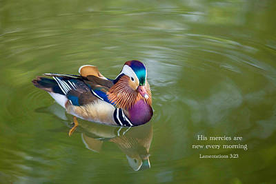 Photograph - Mercies Of God by Lynn Hopwood