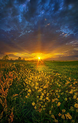 Photograph - Mere Moments by Phil Koch