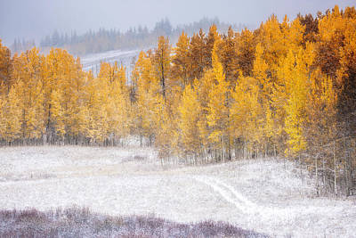 Photograph - Merging Seasons by Kristal Kraft