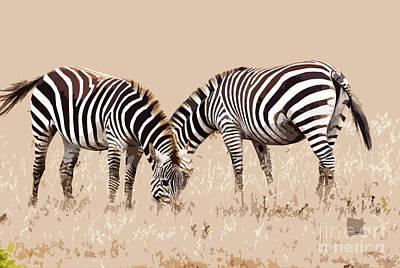 Digital Art - Merging Zebra Stripes by Sharon Foelz