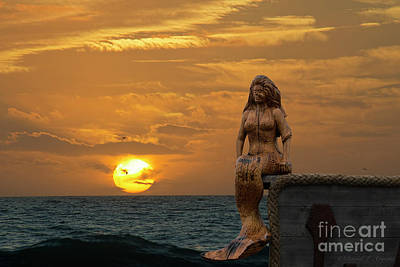 Photograph - Mermaid At Sunset by David Arment