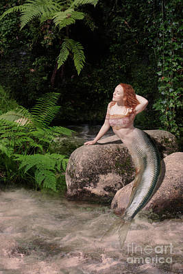 Photograph - Mermaid At The Lagoon by Clayton Bastiani