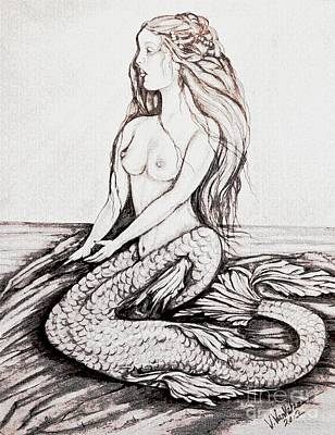 Drawing - Mermaid Drawing by Valarie Pacheco