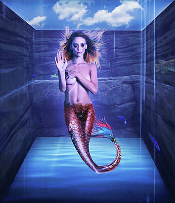 Photograph - Mermaid by Scott Meyer