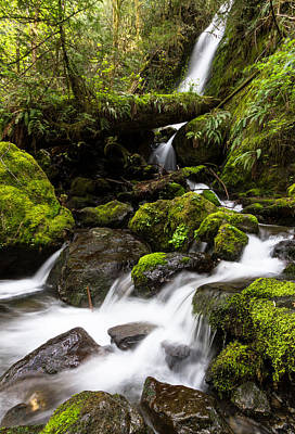 Photograph - Merriman Falls #2 by David Stine