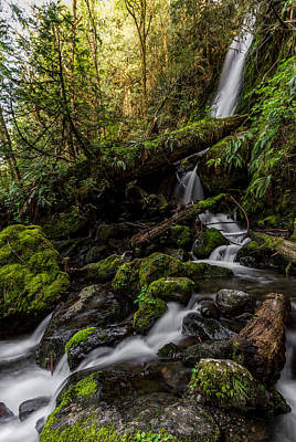 Photograph - Merriman Falls by David Stine