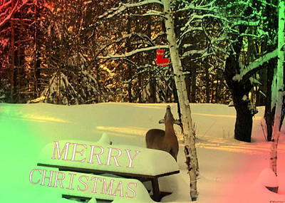 Vermeer Rights Managed Images - Merry Christmas  #20 Royalty-Free Image by Listen LeeMarie
