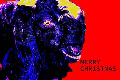 Photograph - Merry Christmas-8 by Anand Swaroop Manchiraju