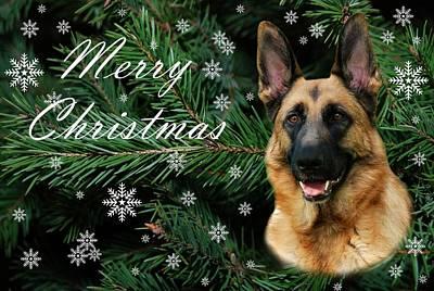 Photograph - Merry Christmas Card by Angie Tirado