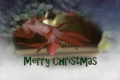 Photograph - Merry Christmas Card by Judy Hall-Folde