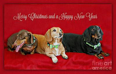 Merry Christmas Dachshunds Art Print by Carolyn Krek