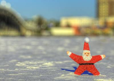 Photograph - Merry Christmas From Destin Florida by JC Findley