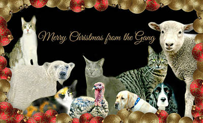 Photograph - Merry Christmas From The Gang by Diana Angstadt
