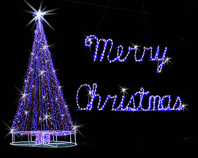 Photograph - Merry Christmas Tree by Leticia Latocki