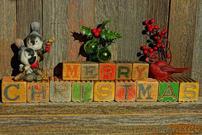 Photograph - Merry Christmas W/birds And Bulbs by Steven Clipperton