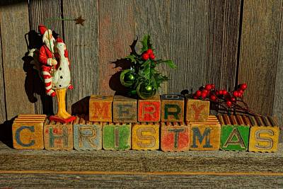 Photograph - Merry Christmas W/santa And Chicken by Steven Clipperton