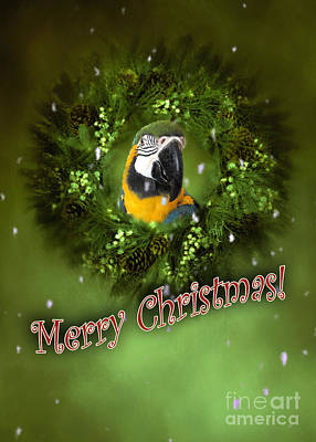 Digital Art - Merry Christmas With Parrot by Victoria Harrington